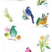 vogeltjes briefpapier
