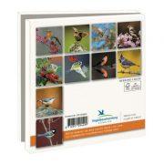 kaartenmapje vogelbescherming